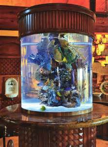 Indoor Saltwater Aquarium