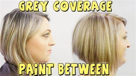 best professional hair color to cover gray grey coverage paint between to blond color correction
