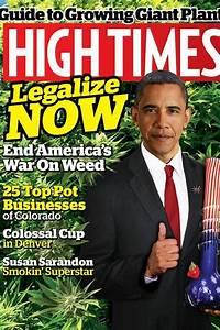 legal medical cannabis