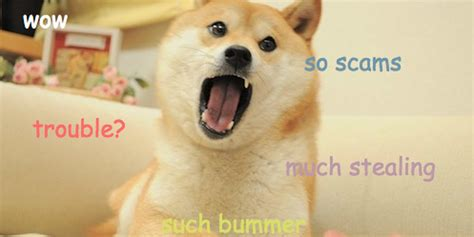 kickstarter  dogecoin turns     scam
