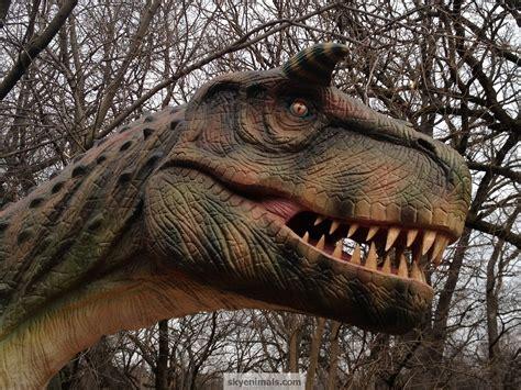 dinosaur wallpaper images