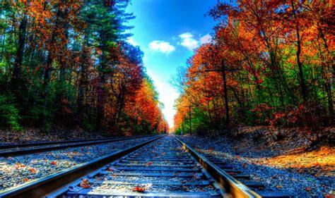 Hd Nature Images, Organic, Plants, Fresh Air, Widescreen