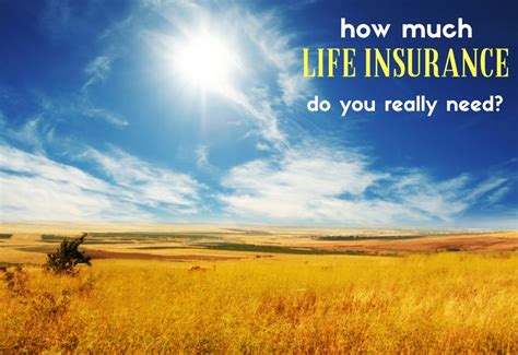 How Much Life Insurance Do You Need?  Fivecentnickel. Hybrid Hvac System Reviews Lambers Cpa Review. Ordering Return Address Labels. Photography Expert Witness College Joplin Mo. Largest Life Insurance Companies In The Us. Google Remarketing Pixel Donate Car Minnesota. Premier Carpet Cleaning United Field Services. Software Inventory Management. Access Background Checks Stanford Data Mining