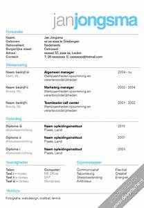 Curriculum Vitae Lay Out 20 Voorbeeld Cv 39 S Infographic Cv