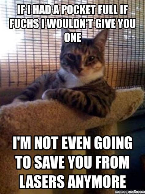 Meanest Memes - most meanest fattest contesting but interesting cat in the world