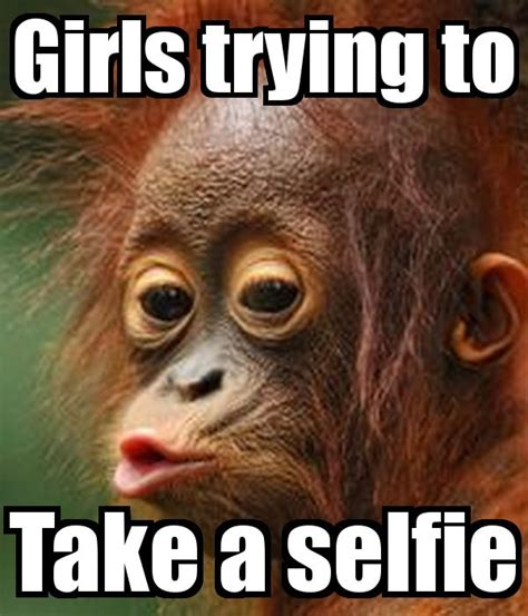 Selfie Meme Funny - girls trying to take a selfie meme funny images pinterest girls ps and selfie