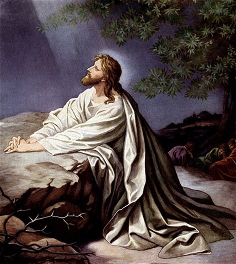 jesus praying in the garden channeling a holy land experience adironnda