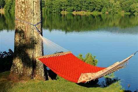 Hanging A Hammock From Trees by Hammock