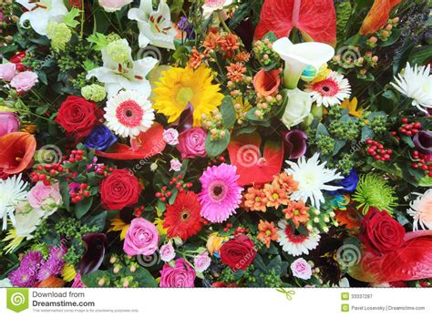 big colorful flowers colorful flowers in large bouquet stock image image 33337287
