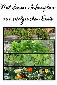 Gemüsegarten Anlegen Beispiele : gem segarten anbauplan so gelingt dir gem se anbauen haus und beet ~ Watch28wear.com Haus und Dekorationen