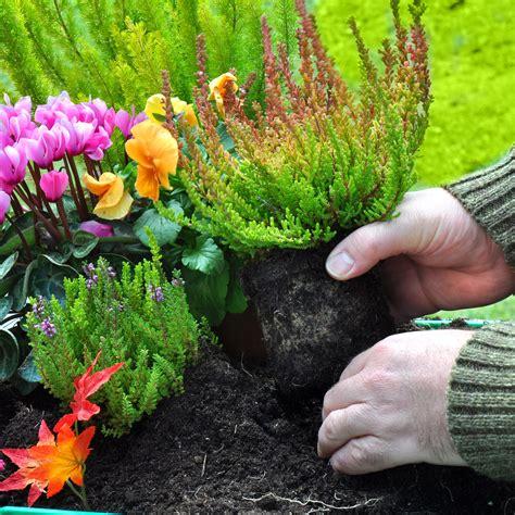 Résultat d'images pour mars en fleurs