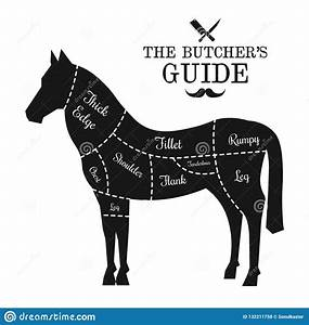 Horse Meat Cut Lines Diagram Graphic Poster  Guide For