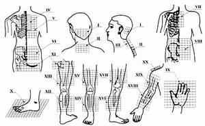 Reflexology Pressure Points For Lower Back Pain