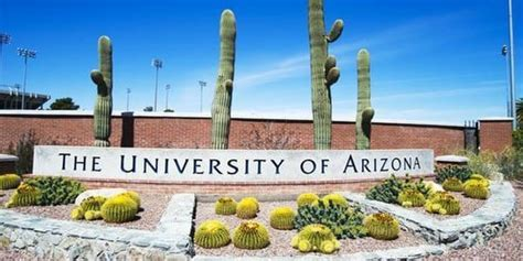 Bsn Nursing Programs In Arizona by Best Nursing Schools In Arizona In 2019 The Top 24