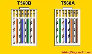 Cat 5 Wiring Diagram Color Code
