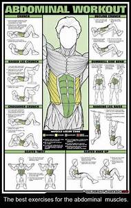 The Best Exercises For The Abdominal Muscles