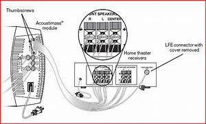 Bose Acoustimass 9 Wiring Diagram