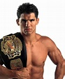 Page 2 - 5 Best UFC Light-Heavyweight Champions in History