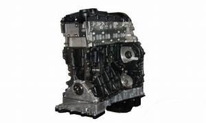 Mercedes Motor Neu : neu motor austauschmotor mercedes 2 2 cdi om651 ~ Kayakingforconservation.com Haus und Dekorationen