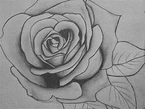 Kunst Zeichnungen Bleistift : zeichnen lernen mit bleistift selbst kunst schaffen ~ Yasmunasinghe.com Haus und Dekorationen