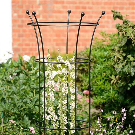 plant support cage   supporting  tomato