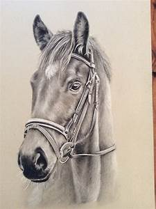 The gallery for --> Horse Paintings Black And White
