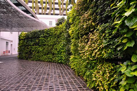 Ideas Green Walls by Elmich Vgm Green Wall Rendezvous Hotel Singapore