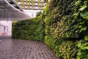 Plante, Green, Wall, Vertical, Garden