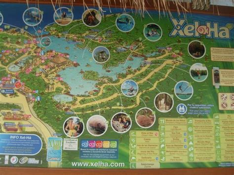 dining area picture  xel ha riviera maya tripadvisor