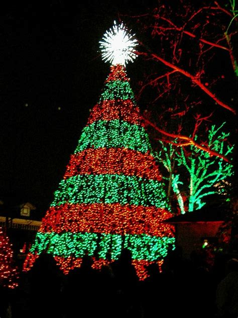 pool city christmas trees 44 best at silver dollar city images on silver dollar city branson