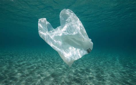 des sacs plastique biod 233 gradables faits 224 partir de calcaire