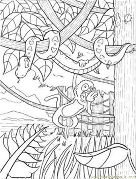 rainforest coloring page  forest coloring pages coloringpagescom