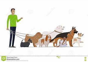 Dog Walking Services | www.pixshark.com - Images Galleries ...