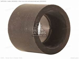 Water Seal 1 For 9 9d  15d 1990  1991