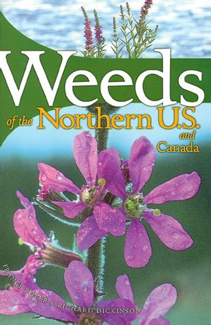 weeds   northern united states canada  guide  identification  france royer