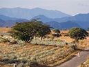 Tippling Down the Tequila Trail in Jalisco, Mexico - Condé ...