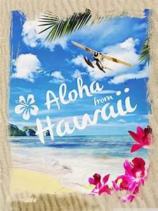 Information About Hawaiian Aloha Background