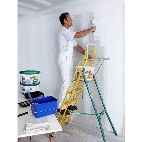 peinture mur et plafond profhome peinture universelle pour int 233 rieurs bien couvrante blanche