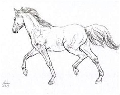 horse drawings images  pinterest drawings