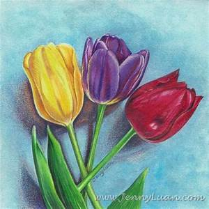 Original Tulip Flower Yellow Purple Red NFAC Colored ...