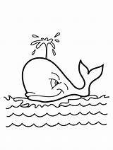Whale Coloring Pages sketch template