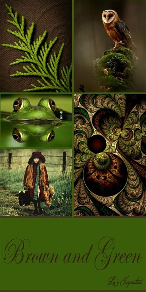 Best 25+ Green And Brown Ideas On Pinterest  Brown And
