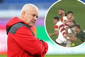 Wales coach Warren Gatland questions how South Africa star ...