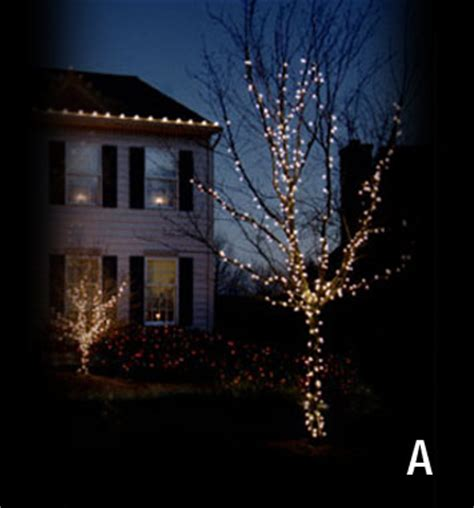 howto wrap christmas lights around tree branches d 233 cor of ottawa lighting sle for a trunk and branch wrap
