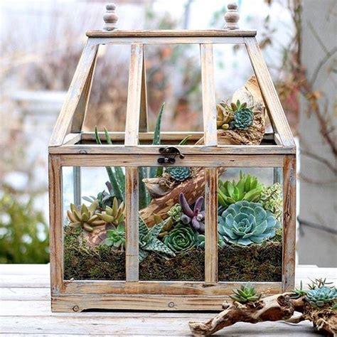 rustic wooden greenhouse   good container   small succulent indoor garden cool creativities