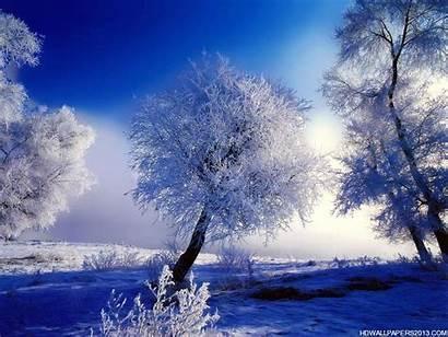 Desktop Winter Wallpapers Backgrounds Nature Definition Wintertime