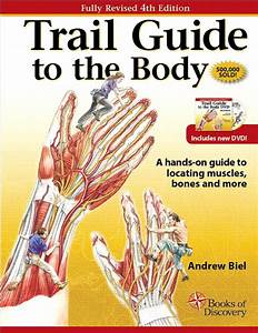 Cook  Orthopedic Manual Therapy  2nd Edition
