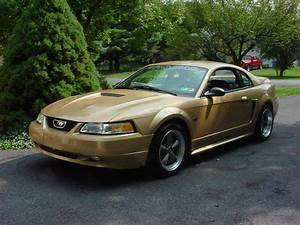 2000 Mustang Parts & Accessories | AmericanMuscle.com - Free Shipping!