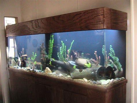 decorations big fish tanks for sale petsmart tank sale cheap 50 gallon fish tanks