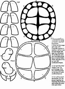 Turtle | crayola.com.au